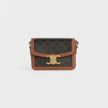 Celine 188882BZ4.04LU TRIOMPHE帆布和小牛皮小号手袋